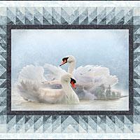 Graceful Swans