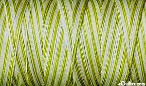 Variegated - AURIFIL Cotton Thread - 50 Wt - Spring Prairie