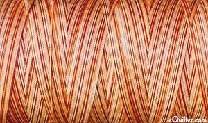 Variegated - AURIFIL Cotton Thread - 50 Wt - Cinnamon Sugar