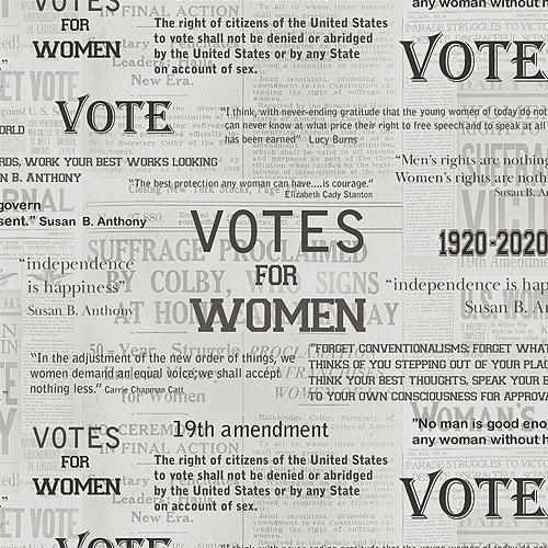 AMERICA Your Vote Counts - Votes for Women - Ash Gray