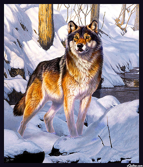 """One of a Kind - Winter Wolf Gaze - 36"""" x 44"""" Panel"""
