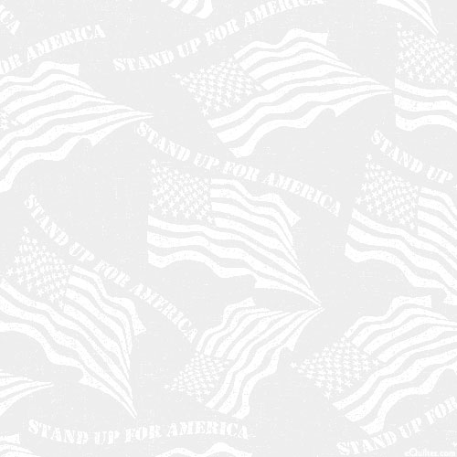 """Proud & Waving Flags - White - 108"""" QUILT BACKING"""