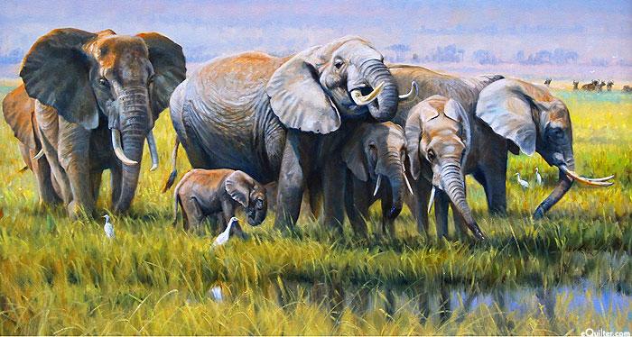 "Generations of Elephants - 24"" x 44"" PANEL - DIGITAL PRINT"