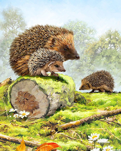 """Beauty In Nature - Hedgehog Family - Multi - 36"""" x 44"""" PANEL"""