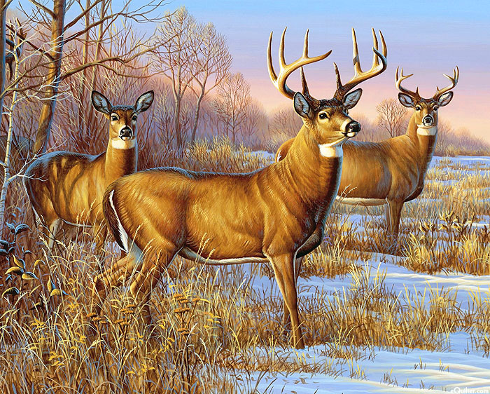 """Whitetails In The Snow - Multi - 36"""" x 44"""" PANEL - DIGITAL PRINT"""