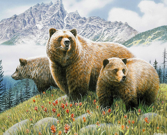 """Bears In The Mountains - Green - 36"""" x 44"""" PANEL - DIGITAL PRINT"""