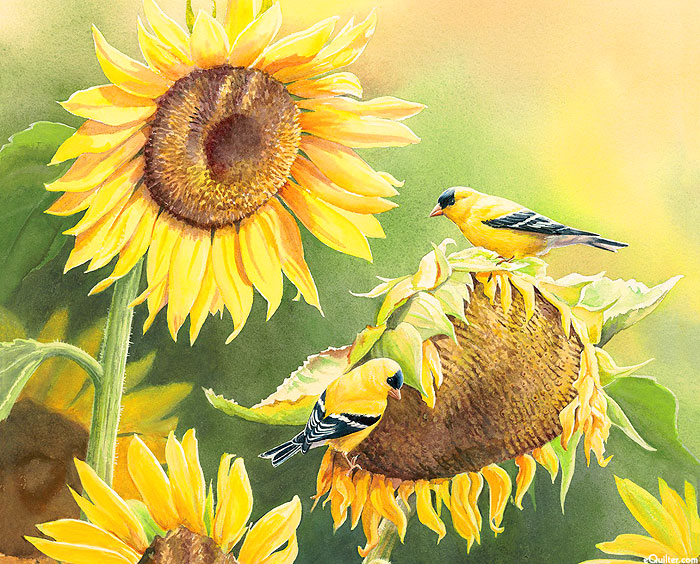 """Beauty In Nature - Golden Finch - Leaf Green - 36"""" x 44"""" PANEL"""