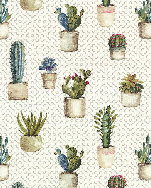 Cactus Garden - Potted Succulents - Ivory