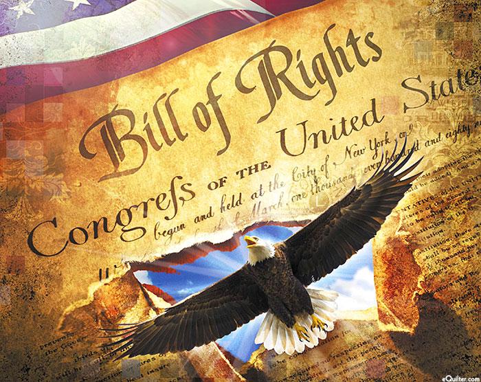 "Best of America - Bill of Rights - 36"" x 44"" PANEL - DIGITAL"