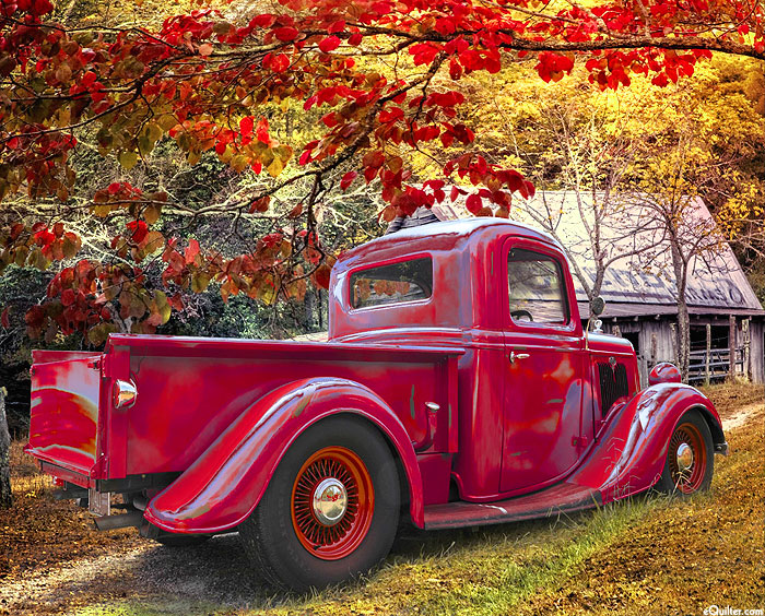 """Old Red at the Farm - Autumn Glory - 36"""" x 44"""" PANEL - DIGITAL"""