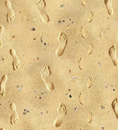 Landscape Medley - Footprints On The Beach - Toasty Beige