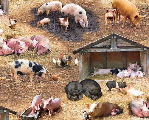 Farm Animals - Pigs In A Poke - Warm Taupe