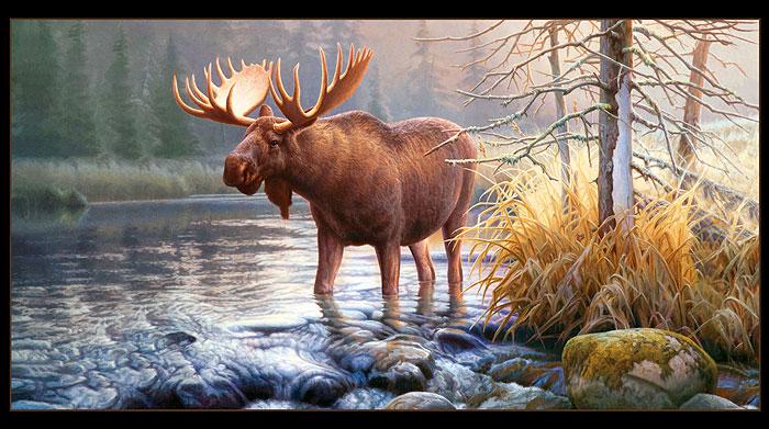 """In His Domain - Moos River - 24"""" x 44"""" PANEL - DIGITAL PRINT"""