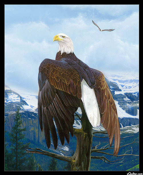 """Wings of Pride - Perched Eagle - Black - 36"""" x 44"""" PANEL"""