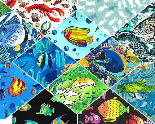Fish Theme FQ Packet