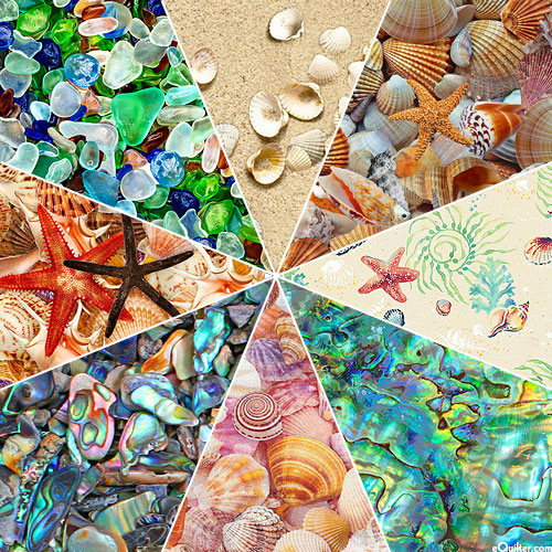 SEASHELL Collection - FQ Collection