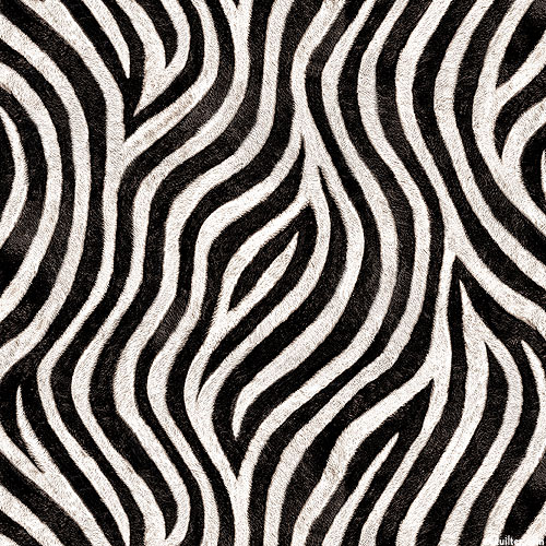 Animal Kingdom - Zebra Swirls - Black - DIGITAL PRINT