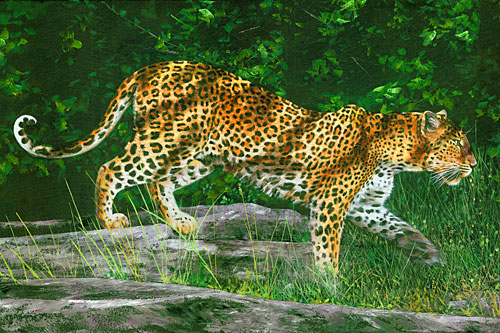 "Naturescapes - Kotiya Leopard - 28"" x 44"" PANEL - DIGITAL PRINT"