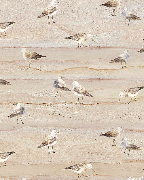 Swept Away - Sandpiper Beach - Sandstone Brown - DIGITAL PRINT