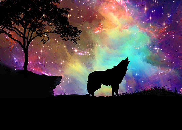 "Wolf Galaxy - 29"" x 44"" PANEL - DIGITAL PRINT"