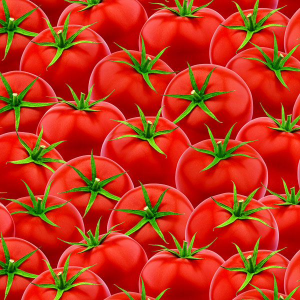 Ripe & Ready Tomatoes - Red - DIGITAL PRINT