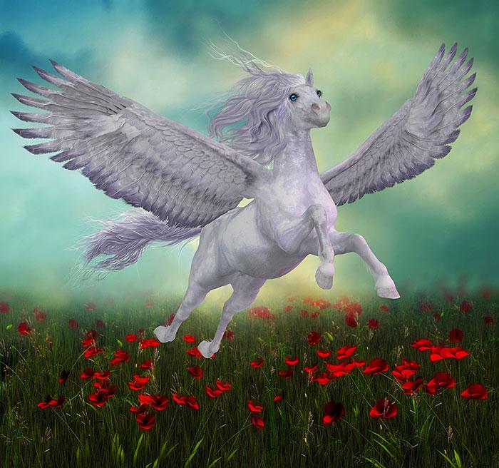 "Magic - Poppy Pegasus - 41"" x 44"" PANEL - DIGITAL PRINT"