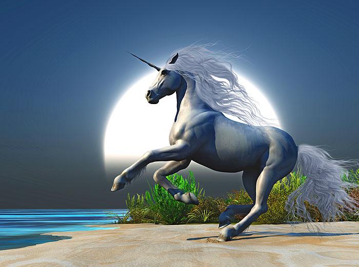 "Magic - Midnight Unicorn - 33"" x 44"" PANEL - DIGITAL PRINT"