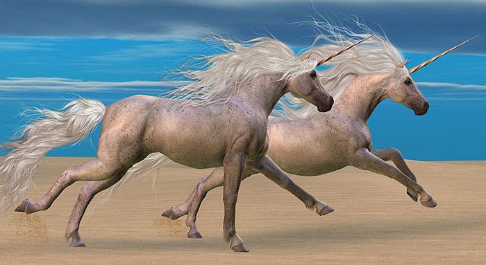 "Magic - Unicorn Beach - 24"" x 44"" PANEL - DIGITAL PRINT"