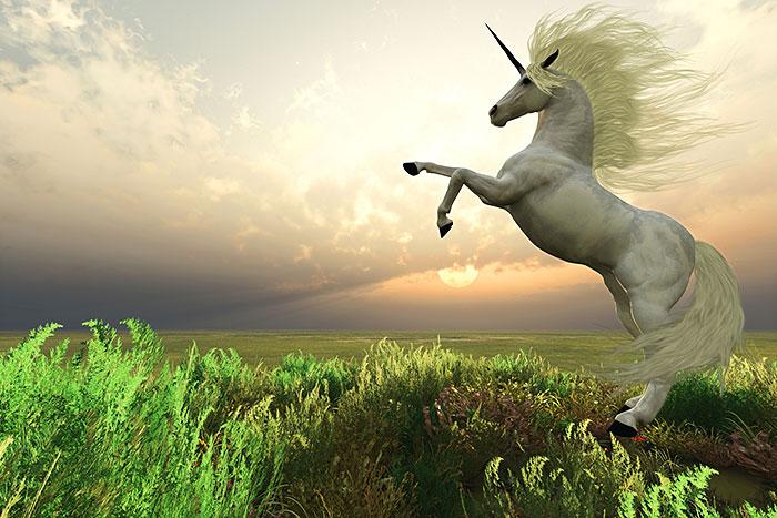 "Magic - Unicorn Stag - 29"" x 44"" PANEL - DIGITAL PRINT"