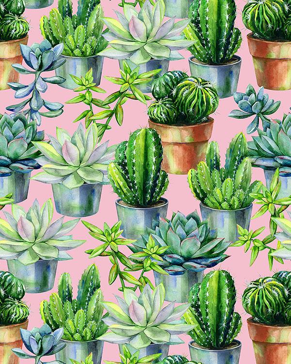 Fancy Cactus Garden - Candy Pink - DIGITAL PRINT