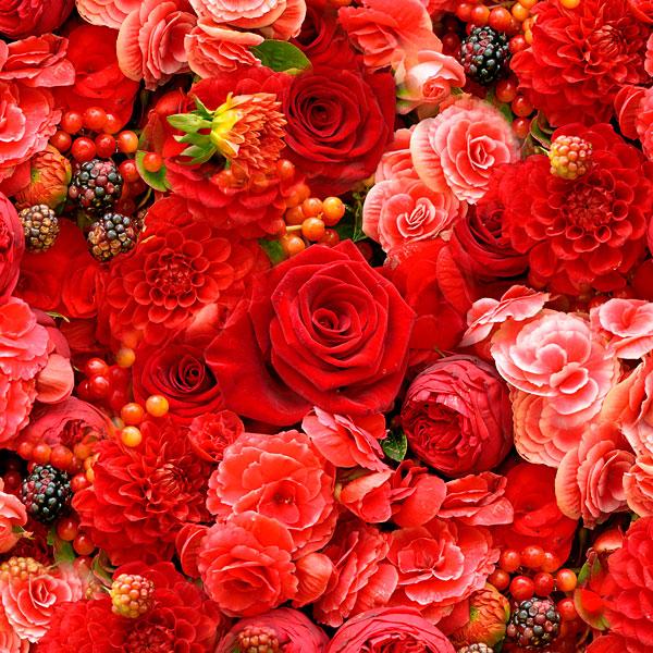 Roses with Dahlias & Berries - Red - DIGITAL PRINT