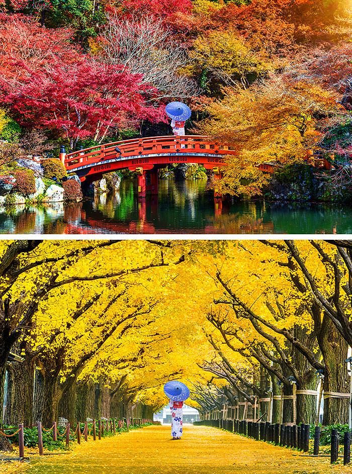 "Japanese Women in Autumn - 32"" x 44"" PANEL - DIGITAL PRINT"