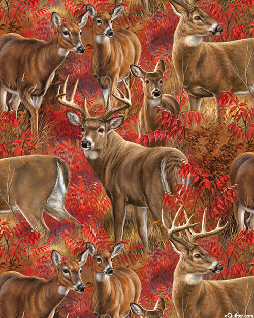 Amongst the Shadows - Autumn Blaze Whitetail Deer - Flame Red