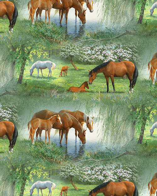 Willow Brook - Scenic Horse Meadow - Willow Green