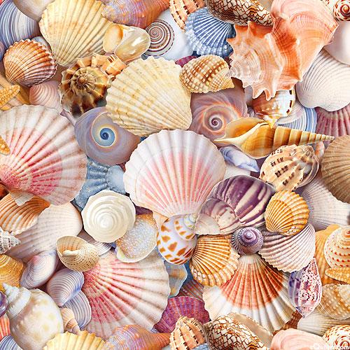 Beach Day - Sandy Shells - Multi