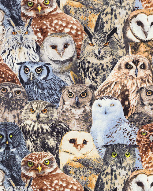 Owls of the Forest - Taupe