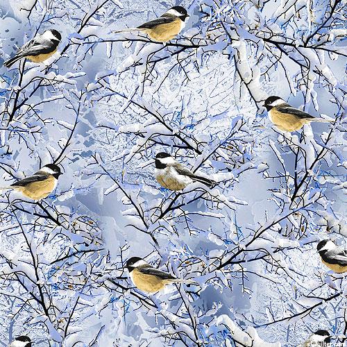 Winter Hike - Chickadee Migration - Frost Blue