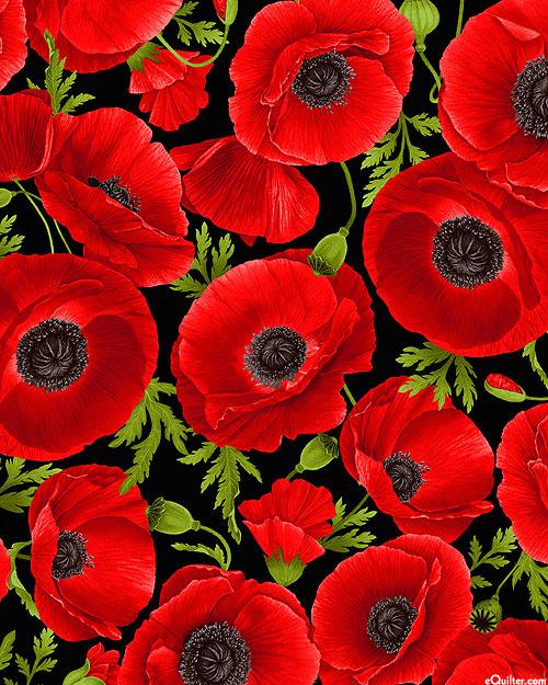 Wild Poppy - Saturated Florals - Black