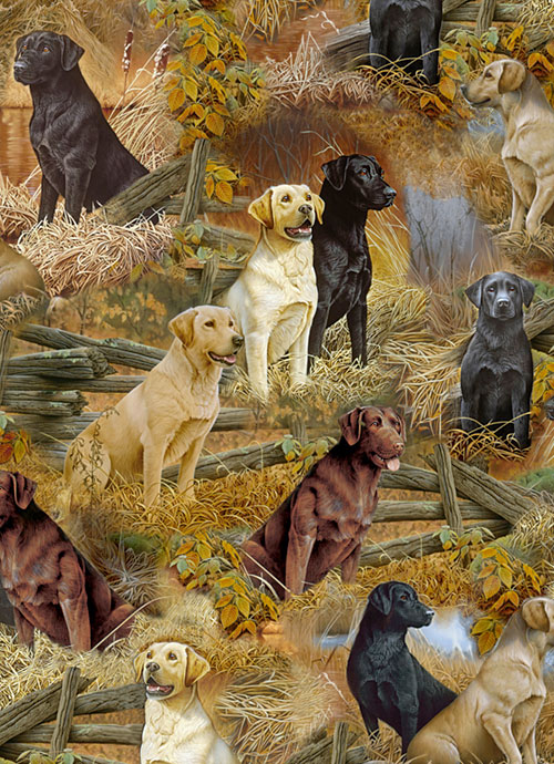 Loyal Lovable Labs - On the Lookout - DIGITAL PRINT