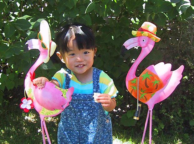 Sophie Flamingo